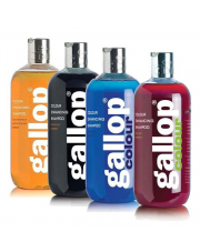 C&D&M szampon Gallop wzmacniający kolor 24h