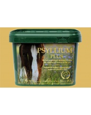 Green Horse Psylium Plus- zapiaszczenie 1,2kg