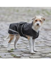 Waldhausen derka dla psa Protection 200g 24h