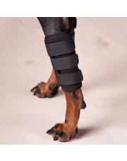 Back on Track ochraniacz na staw nadgarstkowy dla psa 24h