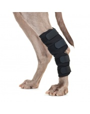 Back on Track ochraniacze na staw skokowy dla psa, para