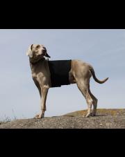 Back on Track ochraniacz na plecy dla psa