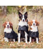 Back on Track derka dla psa przeciwdeszczowa z wypełnieniem