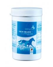 Saracen Yea-Sacc drożdże dla koni 1kg 24h